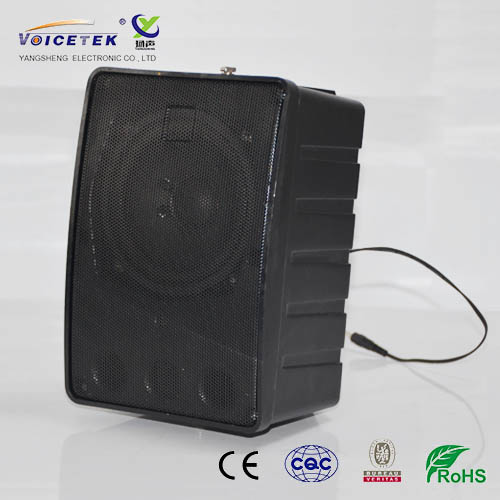 Wall-mounted column speaker-BS-2030WA