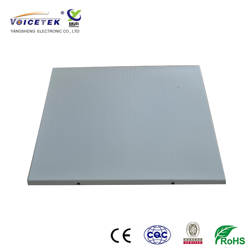 Rectangle ceiling speaker_CL-8600T