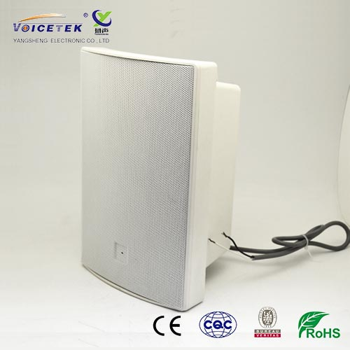 Wall-mounted column speaker-BS-1030WA